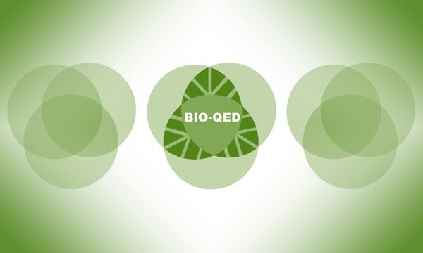 Warsztaty dla zainteresowanych BIO-QED