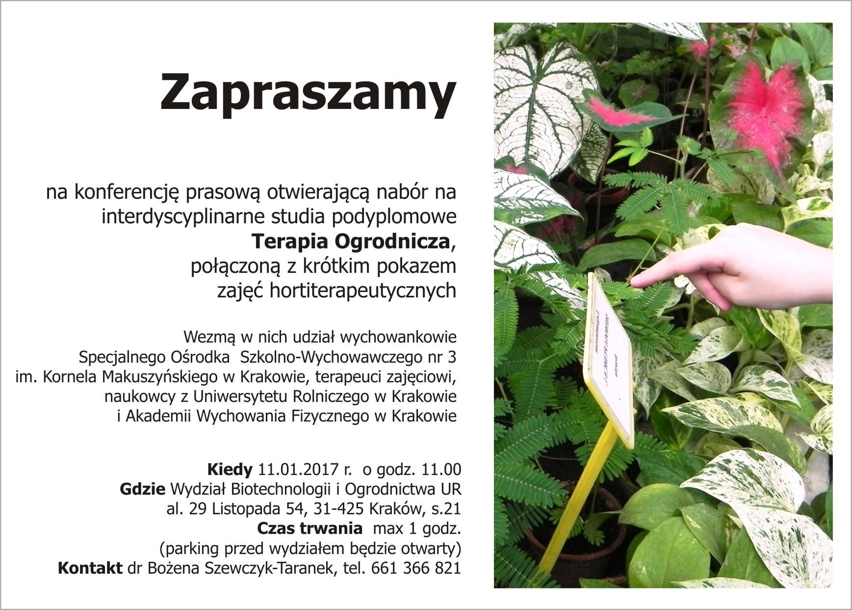 Hortiterapia - terapia ogrodnicza