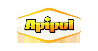 Apipol Kraków