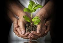 Biogospodarka - Smart Lab