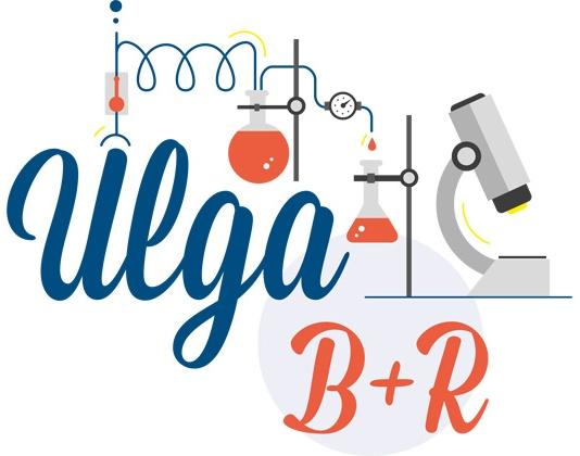 Ulga B+R