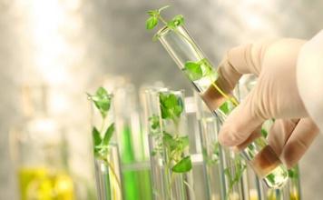 Badania genetyczne i biobankowanie